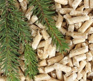 Holzpellets Tanne