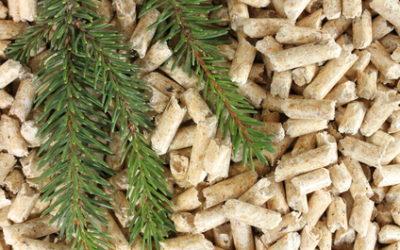 Jaki pellet jest lepszy, iglasty czy liściasty? Jak odróżnić jeden od drugiego?