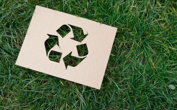 Pellet i recyklingowane opakowania. Zobacz, jak być bardziej EKO